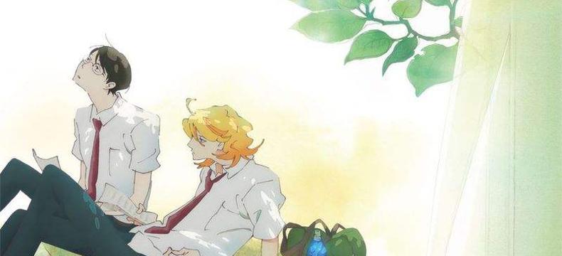 校园蔷薇漫画